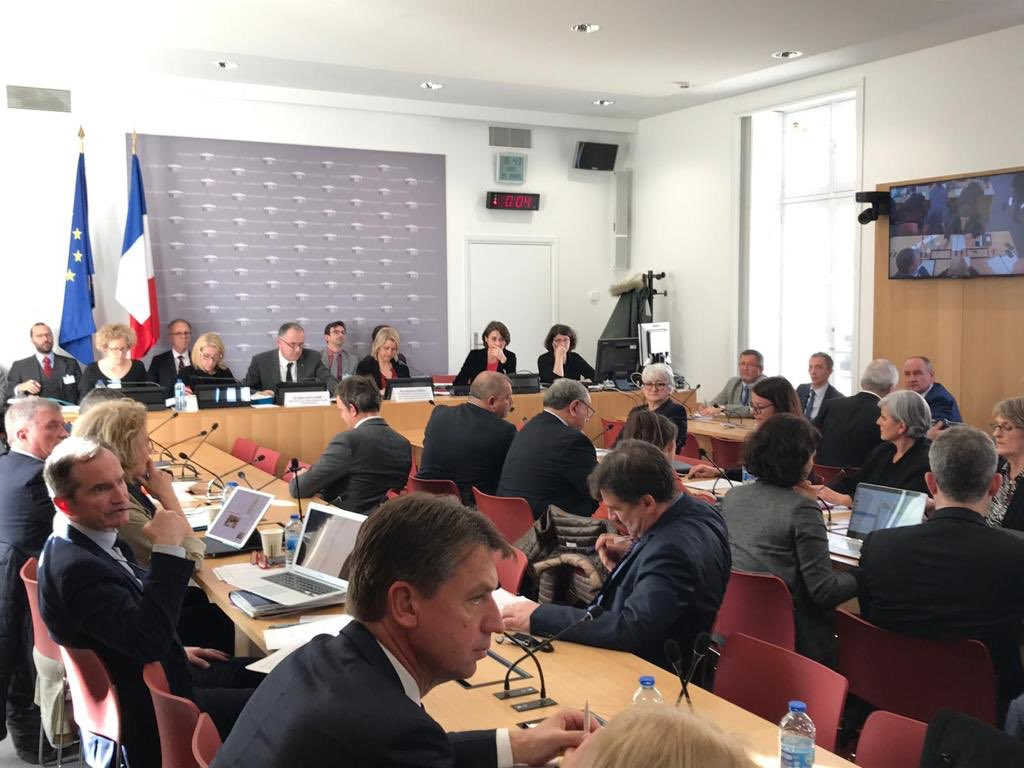 Audition Didier Guillaume, Ministre de l'Agriculture et de l'Alimentation